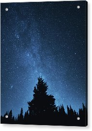 Night Sky Acrylic Print by Misha Kaminsky