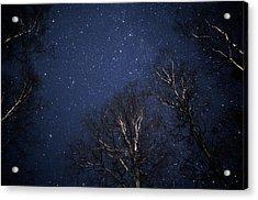 Night Sky Acrylic Print by Pekka Parviainen/science Photo Library