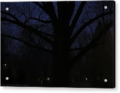 Night Acrylic Print by Stacie  Goodloe