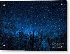 Night Stars Acrylic Print