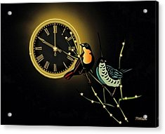Night Time Acrylic Print by Mary Anne Ritchie