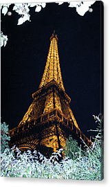 Night Vision Acrylic Print
