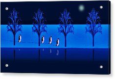 Night Walk Of The Penguins Acrylic Print by David Dehner