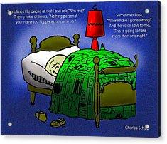 Night Worries Acrylic Print by Mike Flynn