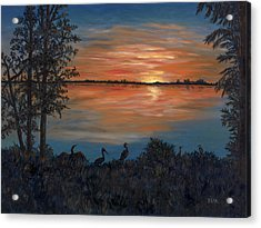 Nightfall At Loxahatchee Acrylic Print