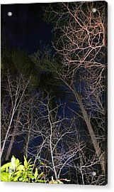 Nightfall In The Georgia Pines Acrylic Print