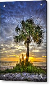 Nightfall Acrylic Print by Marvin Spates