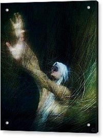 Nightmare Acrylic Print by Gun Legler