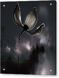 Nights I Wrote  Acrylic Print by Jerry Cordeiro