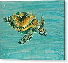 Nik's Turtle Acrylic Print by Emily Brantley