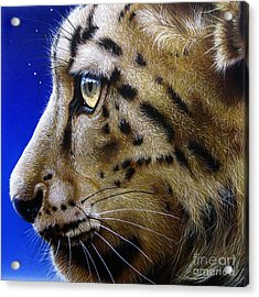 Nina The Snow Leopard Acrylic Print by Jurek Zamoyski