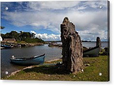 Nishmicatreer Island In Lough Corrib Acrylic Print by Panoramic Images