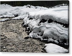 Acrylic Print featuring the photograph Nisqually River Mount Rainier National Park by Bob Noble Photography