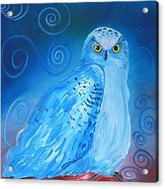 Nite Owl Acrylic Print by Amy Reisland-Speer