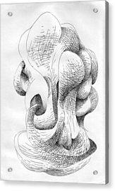 No. 121 Acrylic Print by Matthew Tubbesing