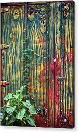 No Cojes Los Mangos Bajitos Acrylic Print