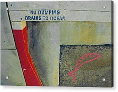 No Dumping - Drains To Ocean No 2 Acrylic Print by Ben and Raisa Gertsberg