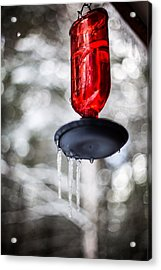 Acrylic Print featuring the photograph No Hummingbirds Today by Aaron Aldrich
