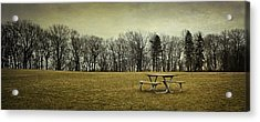 No More Picnics Acrylic Print by Scott Norris