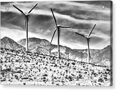 No Place Like Home 3 Desert Hot Springs Acrylic Print by William Dey