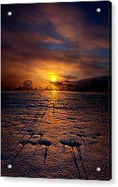 No Rush Acrylic Print by Phil Koch