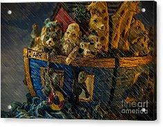 Noah's Ark Acrylic Print by Donald Davis