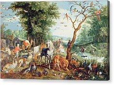 Noahs Ark Oil On Canvas Acrylic Print