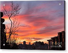 Acrylic Print featuring the photograph Nob Hill Sunset by Kate Brown