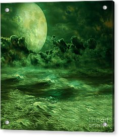 Nocturnal Acrylic Print by Ester  Rogers