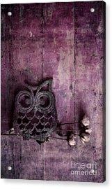 Nocturnal In Pink Acrylic Print by Priska Wettstein