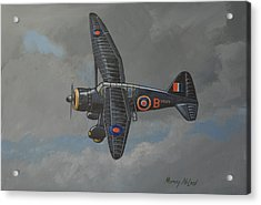 Acrylic Print featuring the painting Nocturnal Lysander by Murray McLeod