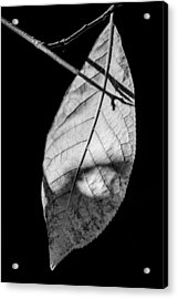Nocturne - Featured 3 Acrylic Print by Alexander Senin