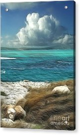 Nonsuch Bay Antigua Acrylic Print by John Edwards
