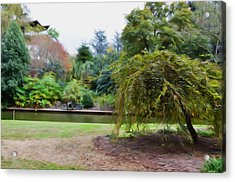 Norfolk Botanical Gardens Canal Acrylic Print by Lanjee Chee