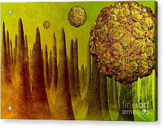 Norovirus In Small Intestine Acrylic Print by Carol and Mike Werner