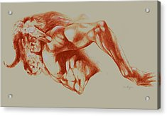 North American Minotaur Red Sketch Acrylic Print