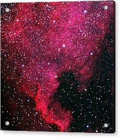 North American Nebula Acrylic Print