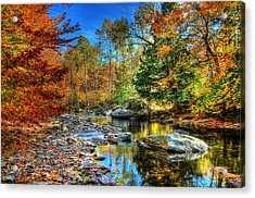 North Branch In Fall Acrylic Print by John Nielsen