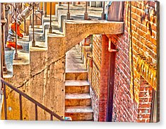 North By Northwest By Denise Dube Acrylic Print by Denise Dube