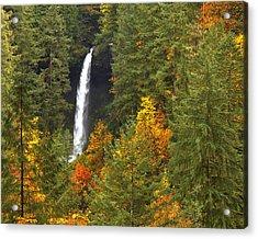 North Falls Acrylic Print