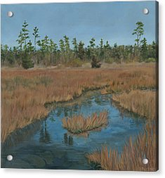 North Landing State Park Va Acrylic Print