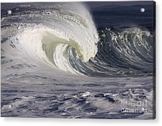 North Shore Wave Curl Acrylic Print by Vince Cavataio