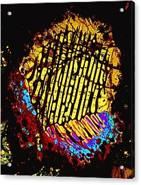 Neon Fingerprint Acrylic Print
