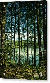 North Woods Lake Acrylic Print