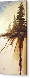 North Woods Pines Acrylic Print by Rick Huotari
