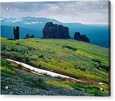 Northen Summer Landscape Acrylic Print by Vladimir Kholostykh