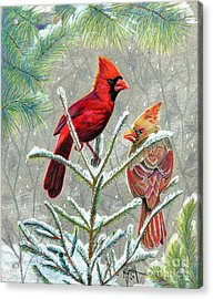 Northern Cardinals Acrylic Print by Marilyn Smith
