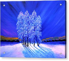 Northern Lights Moody Spruce Tree Shadows Acrylic Print by Reggie Hart