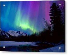 Northern Lights Acrylic Print by Shere Crossman