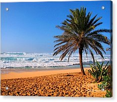 Acrylic Print featuring the photograph Northshore Beach by Kristine Merc